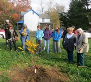 Tree planting for Artie