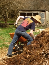 Moving woodchips